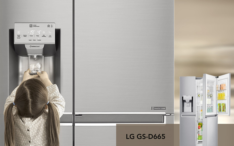 یخچال ساید بای ساید 28 فوت ال جی LG SIDE BY SIDE GS-D665